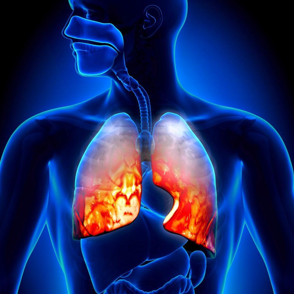 Лечебное питание диета при заболеваниях органов дыхания